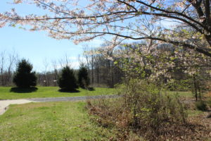 Tilden Woods Park