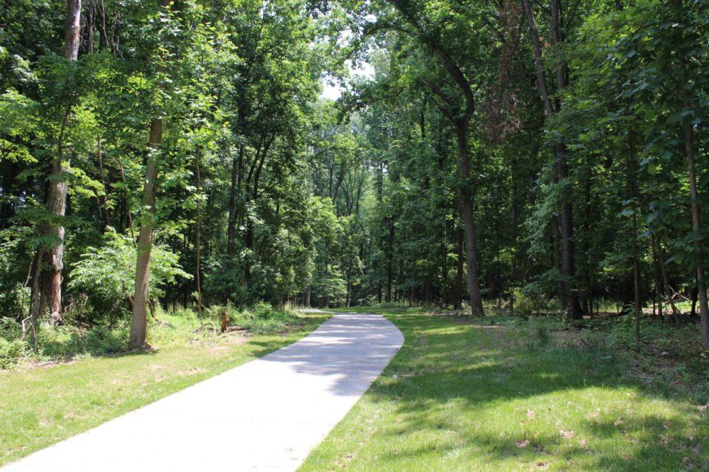 Tilden Woods trail