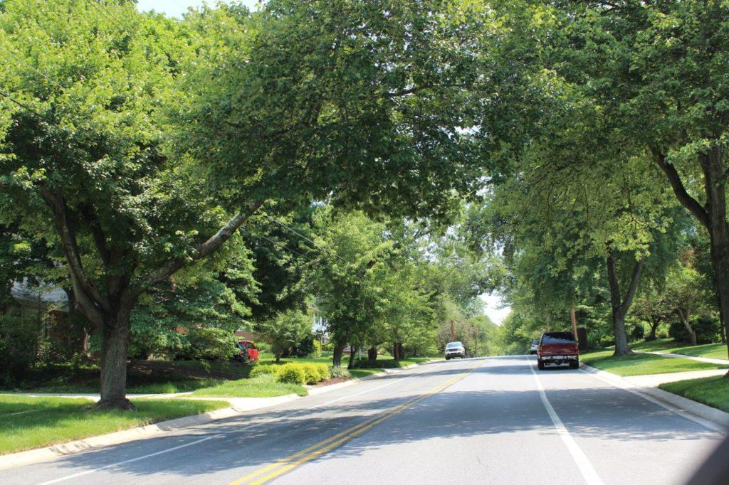 drive through Tilden Woods neighborhood
