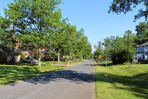 Tree lined street in the Flower Valley neighborhood